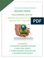Informe Brigada Verde
