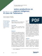 Dialnet-EmprendimientosProductivosEnGruposDeMujeresIndigen-4835585