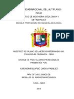 111 INFORME DE PRACTICAS 07-05-19 aprobado.pdf