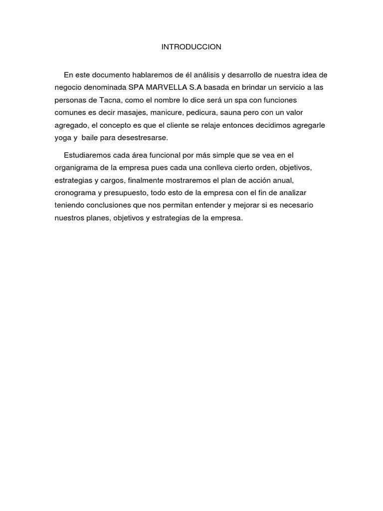 Trabajo Final Introduccion Adni   PDF   Presupuesto   Business