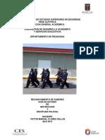 263878623-Instruccion-Policial.pdf
