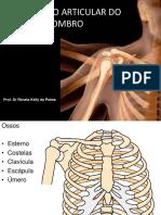 Ombro CINESIOLOGIA