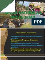 ECOLOGÍA-CAPITULO V.pptx