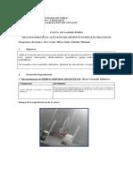 Informe de química contexto 2, Reconocimiento.docx