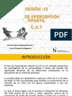 Clase  - CAT