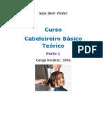 curso-cabeleireiro-basico-teorico.pdf