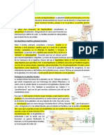 3. Patología tiroidea