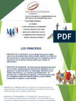 PRINCICPIOS (1)