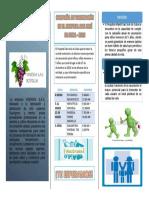 Diseño de Páginas Mediante El Uso de Word