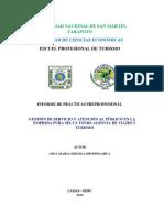 Informe Final de Practicas Profesionales