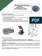 Guia 3 Procesos Celulares (1).pdf