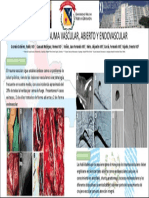 Cirugía vascular, Cirugía endovascular, Angiología
