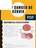 Nic y Cancer de Cérvix