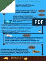 Infografia Esttrategia Oceano Azul- Proyecto