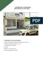 Relatório de Atividades Apae Ano 2018 Oficial (1)