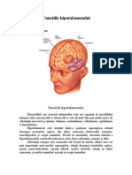 Functiile hipotalamusului