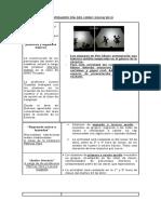 ACTIVIDADES DÍA DEL LIBRO 2019 revisado (1).docx