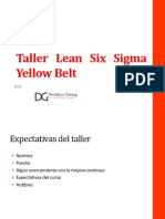 267560988 Yellow Green Belt