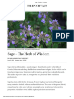 Sage – the Herb of Wisdom