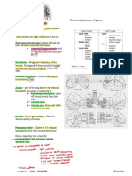 Lung Anatomy and Physiology