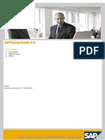 SAP Setup Guide