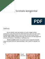 Hernia Scrotalis Kongenital SGD 4