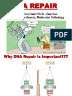 DNA Repair Farina.pdf