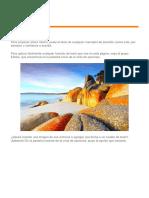 Documento (11.docx