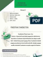 PPT CYANOBACTERIA KELOMPOK 3.pptx