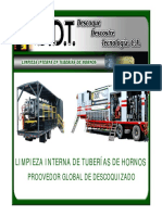 Presentacion_DDT pig.pdf