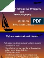 sistema-urinaria-blok-x-feb-2010.ppt