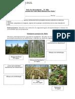 5° año -  Historia  -  Guía   -  Paisajes de cada zona natural