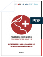 Diretrizes-Zero-Morte-Materna-SES-MG (1).pdf