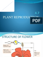 4.7 Plant Reproduction