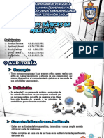 Auditoria_Contaduria_publica_Laminas Expositivas