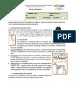 1. Locomoción en seres vivos.pdf