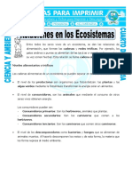 30 Ficha Relaciones en Los Ecosistemas Para Cuarto de Primaria