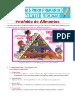 Pirámide de Alimentos Para Cuarto de Primaria