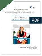 Sara Fernandes Ferreira PAP 17.01.2017
