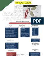 Estructural Repair Manual for CLASES