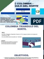 Comercio (Tlc) Colombia y Triangulo Del Norte