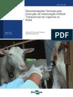Recomendações Técnicas Para IA Transcervical Em Caprinos No Brasil