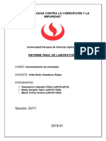 Informe Final Concentra