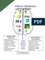 HEMISFERIOS CEREBRALE1