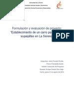 Informe evaluacion de proyecto.FFyJP..docx