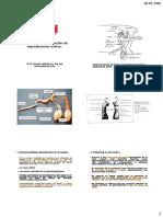 Selección-de-reproductores.pdf