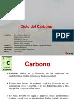 Ciclo Del Carbono Final Final