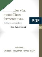 Principales Vías Metabólicas Fermentativas (Cultivos Anaerobios)