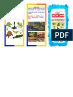 EsSlide.Org-LOS ANIMALES VERTEBRADOS triptico.docx.pdf