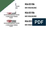 2. Lomo de Pioner A4 (3).docx